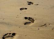 10 pasos para emprender con éxito